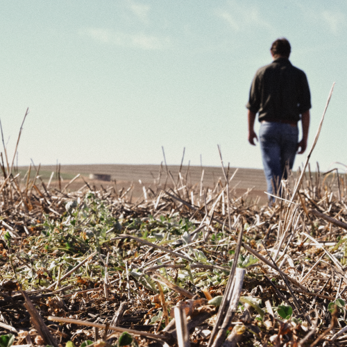 Protecting Tomorrow's Land with Sustainability Practices on the Farm