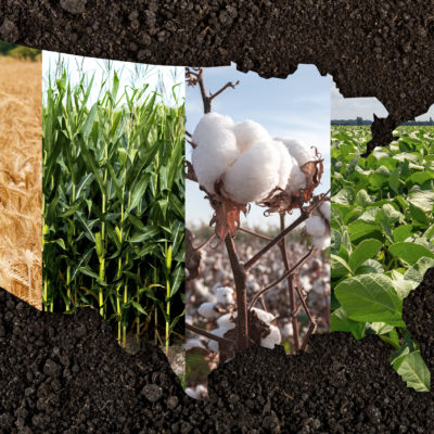 The United States of Agriculture